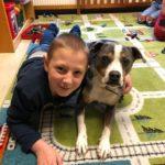 Schulhund Blue